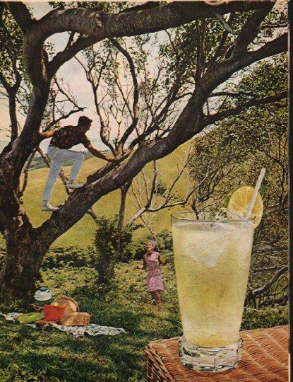 """1965 Rums of Puerto Rico Ad """"Daiquiri Collins"""""""