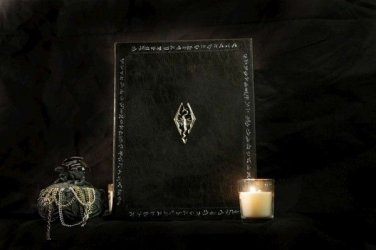 Skyrim Book of the Dovahkiin Tome eReader / iPad Cover / Kindle - Custom Size