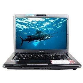 "Toshiba Laptop 15.4"" Display (3GB RAM / 250GB HD)"