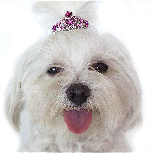 Swarovski Crystal Crown Hair Pin