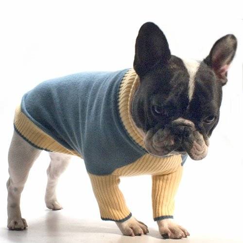 Rodeo Drive Sweater Blue/Yellow