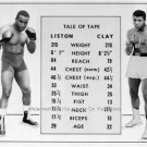 Ali Sonny Liston 1964 Fight Tale of Tape Poster Photo