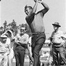 PGA Collectors Pro Shop Photo Young Arnold Palmer Golf Legend Masters Champion