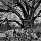 PGA TOUR PROFESSIONAL CADDIES 1962 MASTERS AUGUSTA PHOTO
