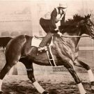 GREAT DEPRESSION ERA 1937 MOVIE SEABISCUIT RACEHORSE AMERICAN THOROUGHBRED PHOTO