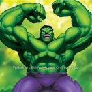 Hulk  Classic Cartoon Super Hero Poster 13 x 19