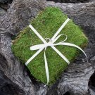This Natural Moss Wedding Ring Bearer Pillow