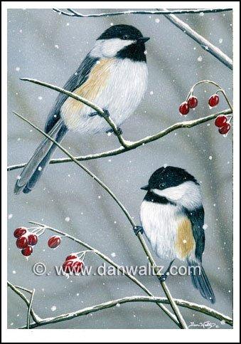 Winter Chickadees Print