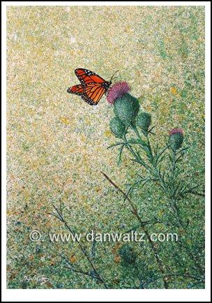 Monarch Butterfly Original