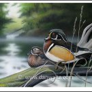 Misty River Wood Ducks Print