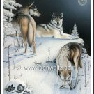 Timber Wolves Original Painting