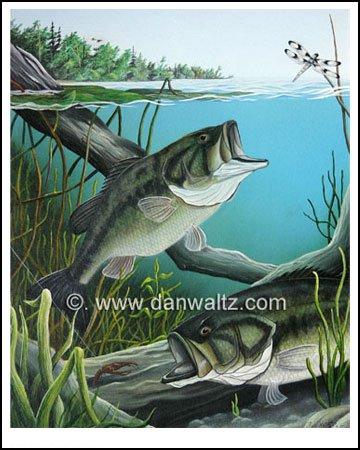 Largemouth Bass Original Painting