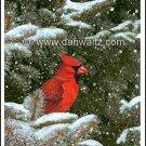 Cardinal Print