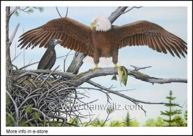 American Bald Eagle Nest Print