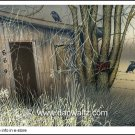 Abandoned Shack Original