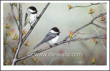 Spring Chickadees Print