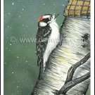 Downy Woodpecker Print