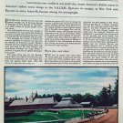 1935 Fortune Saratoga Races I - painting vintage Print 10x14