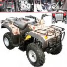 Type ATV Model 250-II 4 Stroke