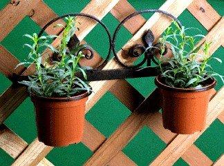 Planter Set Wall
