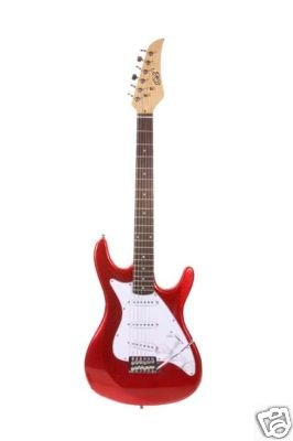 Professional Electric Guitar
