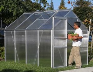 Greenhouse 4 FT by 6 FT