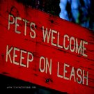 Keep em on a Leash - 8x10 - Original Fine Art Photograph