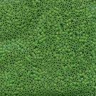 DB724 Miyuki Delica 11o Pea Green Opaque Seed beads 15gr (SB957)