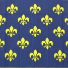Fleur-de-lis Flag 3x5 feet French Royal Banner Blue  & Gold Coat of Arms France
