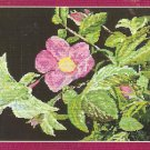 **Hummingbird CROSS STITCH Kustom Krafts Near North Treasures 2003