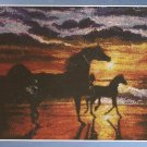 *Cross Stitch KIT Spirit Of The Horse  SERENITY Silhouette