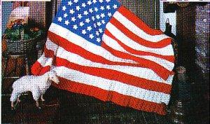 Crochet American Flag Scarf Pattern : CROCHET AMERICAN FLAG AFGHAN PATTERNS Crochet Patterns Only