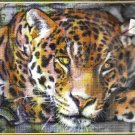 *Jaguar Cross stitch KIT - Resting Jaguar  Kustom Krafts