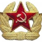 Russian Military Badge Soviet Army Gold Red Star Cossack Hat Coat Pin