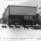 """Remain of Judge Humes"" Valdez, Alaska in 1904 (8x10) ANTIQUE RP Dog PHOTOGRAPH"
