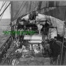 The Dogs on Ship Deck in 1910 Unknown Boat (8x10) ANTIQUE RP Dog PHOTOGRAPH