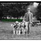 MINEOLA DOG SHOW-GUGGENHEIM & ESKIMO DOGS 1908(8x10) ANTIQUE DOG RP PHOTOGRAPH
