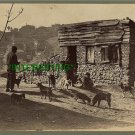 ISTANBUL, TURKEY--PETS IN FRONT OF BUILDING 1862(8x10) ANTIQUE DOG RP PHOTOGRAPH