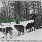 MAIL TEAM SKENNA RIVER BEFORE RAILROAD 1913  (8x10) ANTIQUE DOG RP PHOTOGRAPH