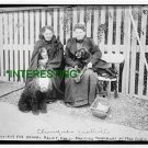 SOCIETY FOR ANIMAL RELIEF- PARIS, FRANCE 1913 (8x10) ANTIQUE DOG RP PHOTOGRAPH