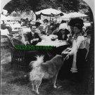 KENSINGTON GARDENS, LONDON ENGLAND IN 1901 (8x10) ANTIQUE DOG RP PHOTOGRAPH