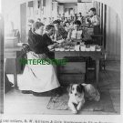 """STEREOSCOPIC VIEW FACTORY """"FILLING ORDERS"""" 1905 (8x10) ANTIQUE RP DOG PHOTOGRAPH"""