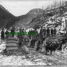 1897 CAMP OF YUKONERS DYEA CANYON, ALASKA (8x10) ANTIQUE RP DOG PHOTOGRAPH