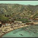 OLD VINTAGE PHOTO: CATALINA ISLAND, BEACH AT AVALON, 1903, CALIFORNIA
