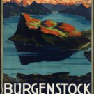 "Large Photo:(11x17)Vintage Travel Poster Reprint:""Burgenstock, Luzern, Suisse"""