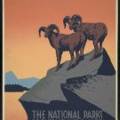 "Large Photo:(8.5x11) Vintage WPA Poster Reprint: ""Preserve Wild Life"" Rams NPS"