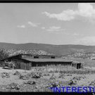 *NEW* Antique Cows Photograph: Hay and Cow Barn, Chamisal, New Mexico, Farmer