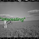 """*NEW"""" PLANE INSECTICIDE SPRAYING 1938 (8.5X11) OLD LARGE ANTIQUE TRACTOR PHOTO"""