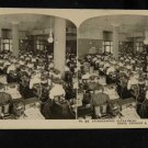 ORIGINAL STEREOVIEW ANTIQUE PHOTO ART: SEARS AND ROEBUCK: STENOGRAPHIC DEPT.