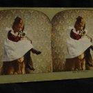 ORIGINAL STEREOVIEW ANTIQUE CARD ART: VINTAGE GIRL HOLDING KITTENS, DRESS